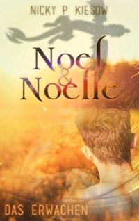 Cover Noel und Noelle Das Erwachen