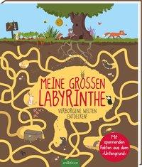 Cover Meine großen Labyrinthe